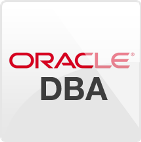Best Oracle DBA training institute in raipur